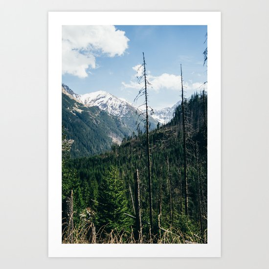 Mountains and Forest Landscape Art Print