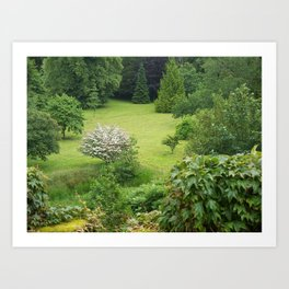 Where the Fae play Art Print