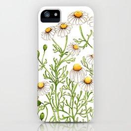 Chamomile iPhone Case