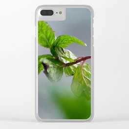 Essence with mint Clear iPhone Case