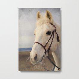 Horse Art - Beauty Is A Light Metal Print