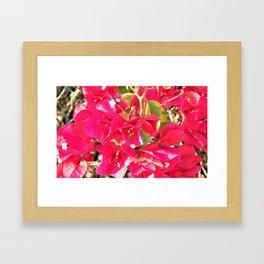Red 1 Framed Art Print