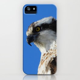 Fisher King iPhone Case