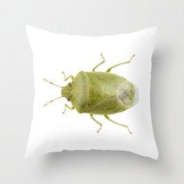 Green shield bug species Palomena prasina Throw Pillow