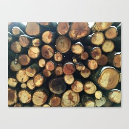 Pile of felled tree trunks Canvas Print