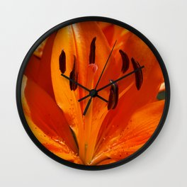 Tangerine Dreams Wall Clock