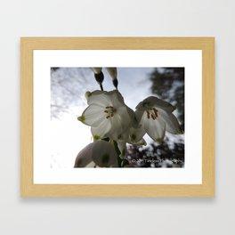 White Glow Framed Art Print