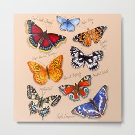 Butterflies on warm terracotta Metal Print