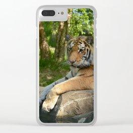 Amur Repose Clear iPhone Case