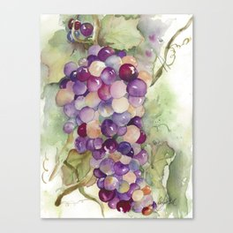 Wine Grapes 2 Canvas Print