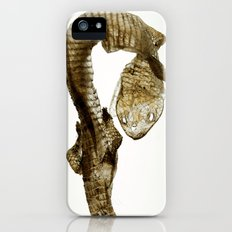 Shed Skin (lizard) iPhone (5, 5s) Slim Case