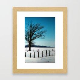 tree #3 Framed Art Print