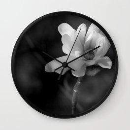 Magnolia Stellata  Wall Clock