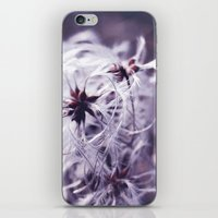 coconut wishes iPhone & iPod Skins featuring Wishes by Sirka H.
