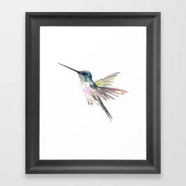 Flying Little Hummingbird Framed Art Print