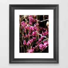 Tiny Pink Blossoms Framed Art Print