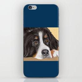 Bernese Mountain Dog iPhone Skin