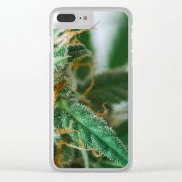 a closeup marijuana Clear iPhone Case