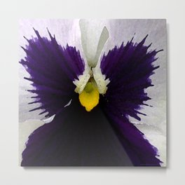 Watercolor of a white and purple pansy  Metal Print