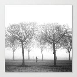 Landscape stories_Plans Canvas Print