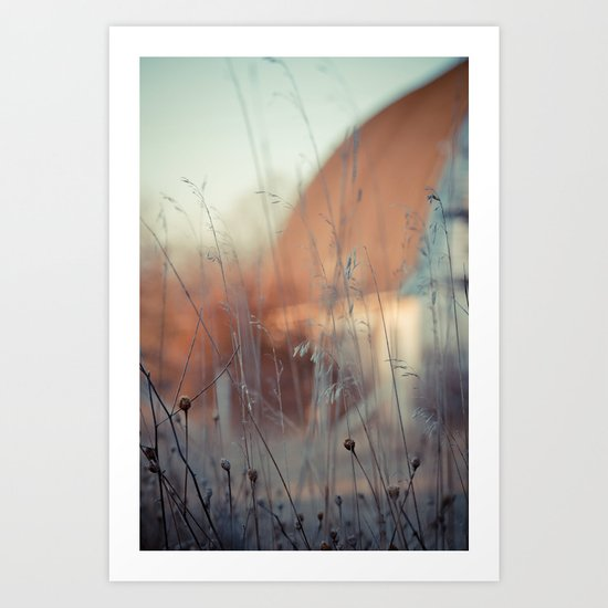 Grains and Grass. Art Print