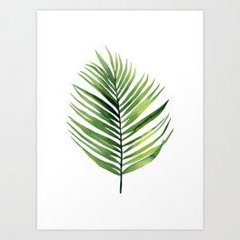 Palm Leaf. Art Print