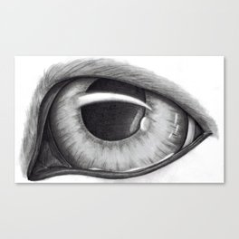 Portrait of Dog's Eye Canvas Print