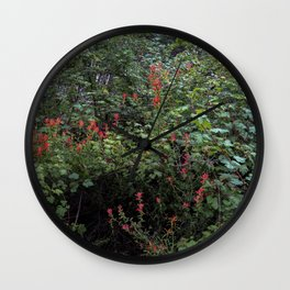 Indian Paintbrush on a Forest Trail Wall Clock