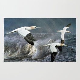 Gannets Skimming The Waves Rug