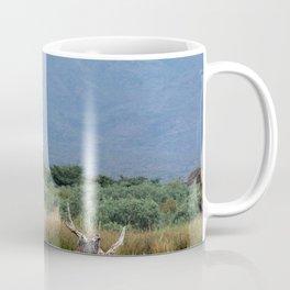 African Fish Eagle Bird Skeleton Trees Landscape Africa Coffee Mug