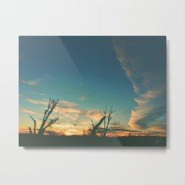 323 | west texas Metal Print