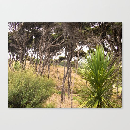 Windswept Trees Canvas Print