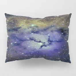 Pansy in Space Pillow Sham