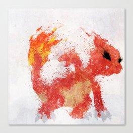 #005 Canvas Print