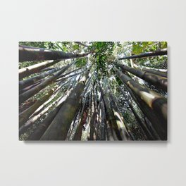 Welcome to the Bamboo Metal Print