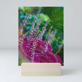 Delicate Blooms Mini Art Print