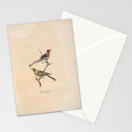JP Giroud - North American birds (1841) - Red Fronted Flycatcher & Olive Backed Flycatcher Stationery Cards
