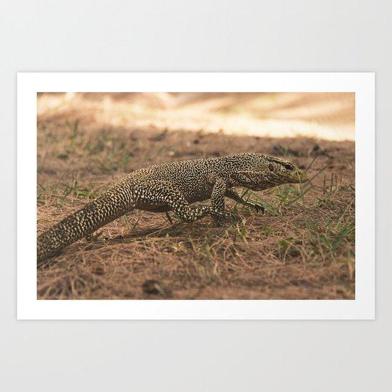 Monitor Lizard (Varanus) Art Print