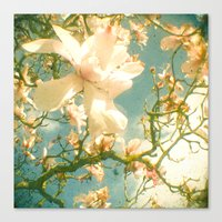 magnolia Canvas Prints featuring Magnolia by Cassia Beck