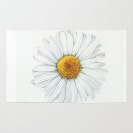 Watercolor Daisy Rug
