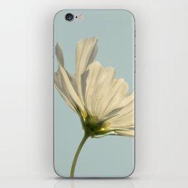 white cosmea iPhone Skin