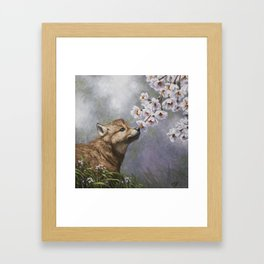 Wolf Pup and Spring Blossoms Framed Art Print