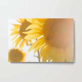 Sunflowers and Sunshine Metal Print