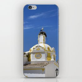 Stork on dome iPhone Skin