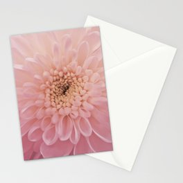 Perfect Petals Stationery Cards