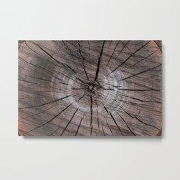 Close up of an Apple Tree Log Metal Print