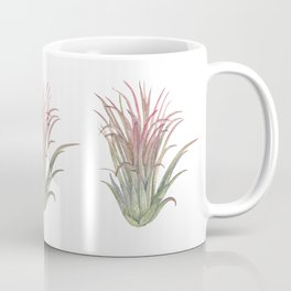 Airplant Coffee Mug