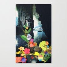 Cave Garden IV Canvas Print