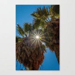 Sunstar Through the Trees Canvas Print
