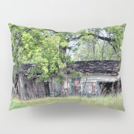 Abandoned and Neglected Pillow Sham